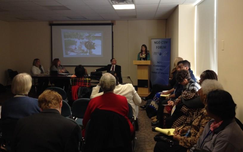 2014-03-18 UN Taylor presentation